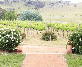 Brindabella Hills Winery - New South Wales Tourism