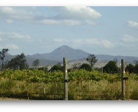 Ironbark Ridge Vineyard - New South Wales Tourism