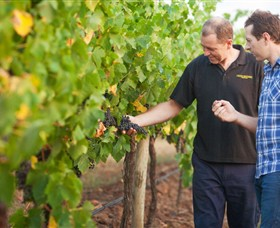 Fratin Brothers Vineyard - New South Wales Tourism