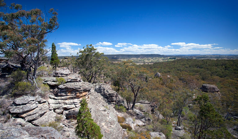 Munghorn Gap Nature Reserve - New South Wales Tourism