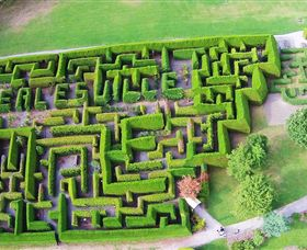 Hedgend Maze and Healesville Laser Sport - New South Wales Tourism