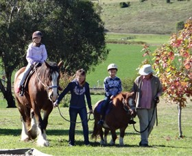 Bathurst Farm Experience - New South Wales Tourism