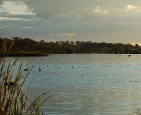 Lake Inverell Reserve - New South Wales Tourism
