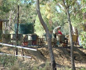 7 Oaks Sapphire Fossicking - New South Wales Tourism