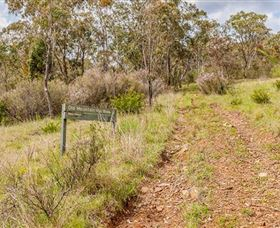 Old Mountain Road Walking Track - New South Wales Tourism