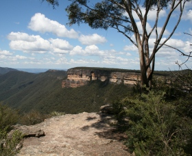 Kanangra-Boyd National Park - New South Wales Tourism