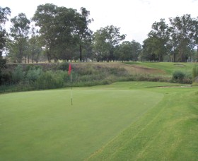 Muswellbrook Golf Club - New South Wales Tourism
