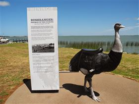 Birdman of the Coorong - New South Wales Tourism