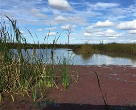 Gwydir Wetlands - New South Wales Tourism