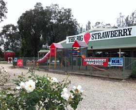 The Big Strawberry - New South Wales Tourism