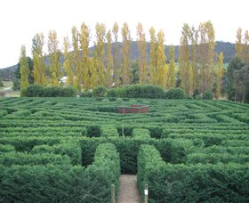 Brookfield Maze - New South Wales Tourism