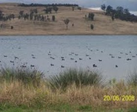 Lake Liddell Recreation Area - New South Wales Tourism