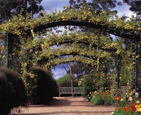Blue Mountains Botanic Garden - New South Wales Tourism