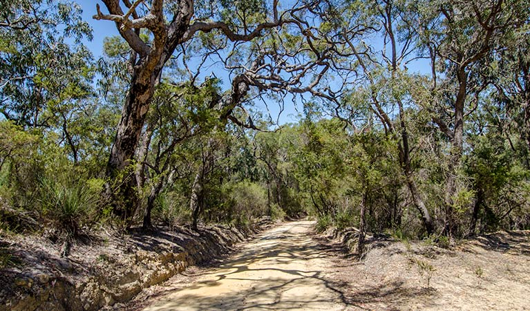 Howes trail - New South Wales Tourism