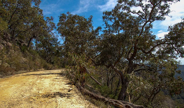 Parr State Conservation Area - New South Wales Tourism