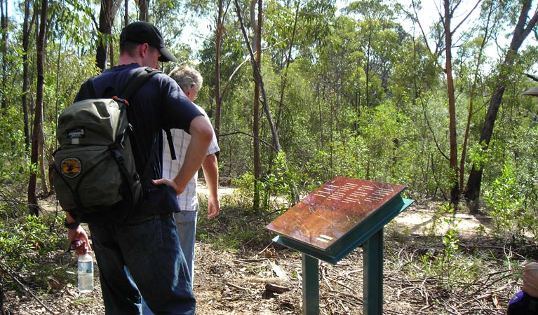 Finchley cultural walk - New South Wales Tourism