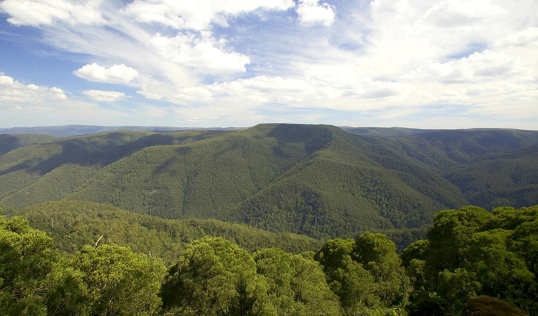 Barrington Tops National Park - New South Wales Tourism