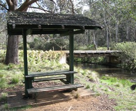 Barrington Tops State Forest - New South Wales Tourism