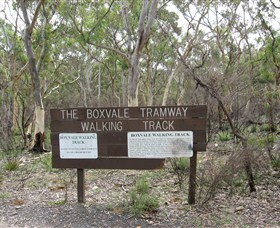 Box Vale Picnic Area - New South Wales Tourism