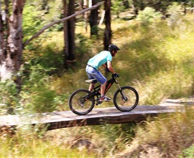 The Steps Mountain Bike Park - New South Wales Tourism