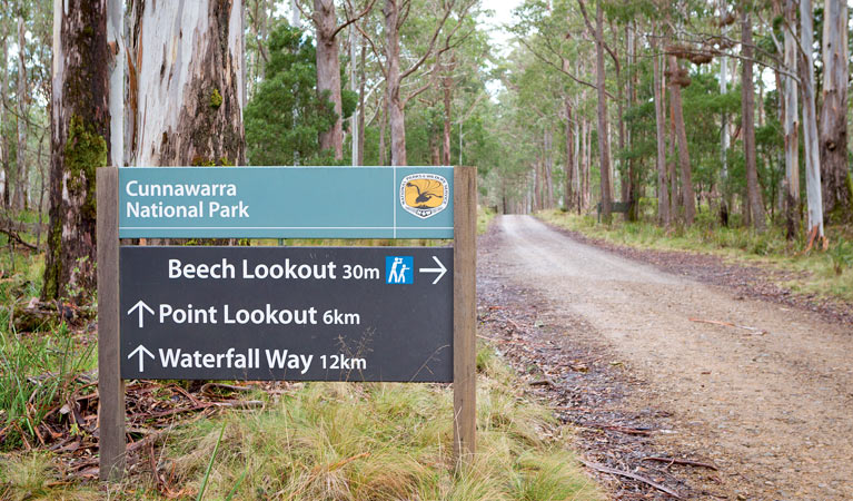 Beech lookout - New South Wales Tourism
