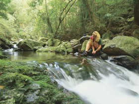 Lower Ballanjui Falls - New South Wales Tourism