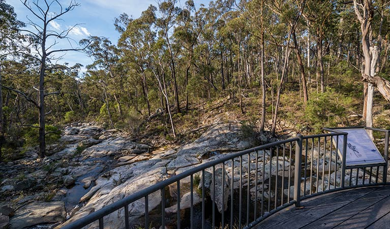 Myanba Gorge walking track - New South Wales Tourism