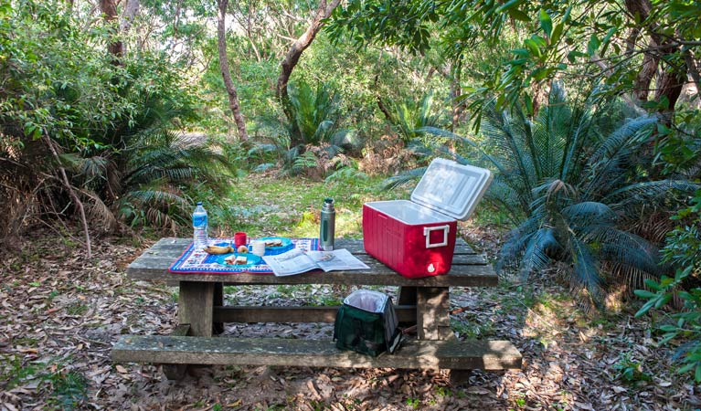 Broadwater Beach picnic area - New South Wales Tourism