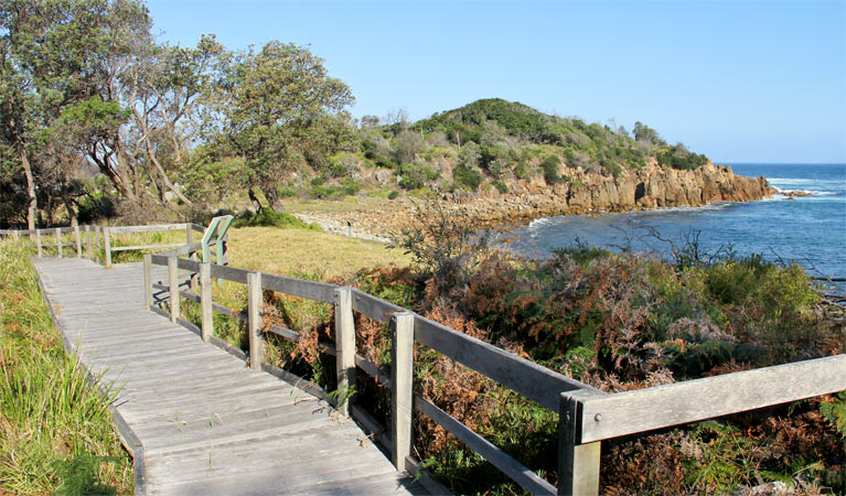Mimosa Rocks walking track - New South Wales Tourism