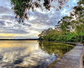 Merimbula Boardwalk - New South Wales Tourism