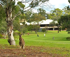 Pambula Merimbula Golf Club - New South Wales Tourism