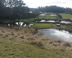 Guide Falls Farm - New South Wales Tourism