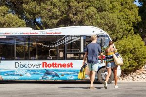 Rottnest Island Tour from Perth or Fremantle including Bus Tour - New South Wales Tourism