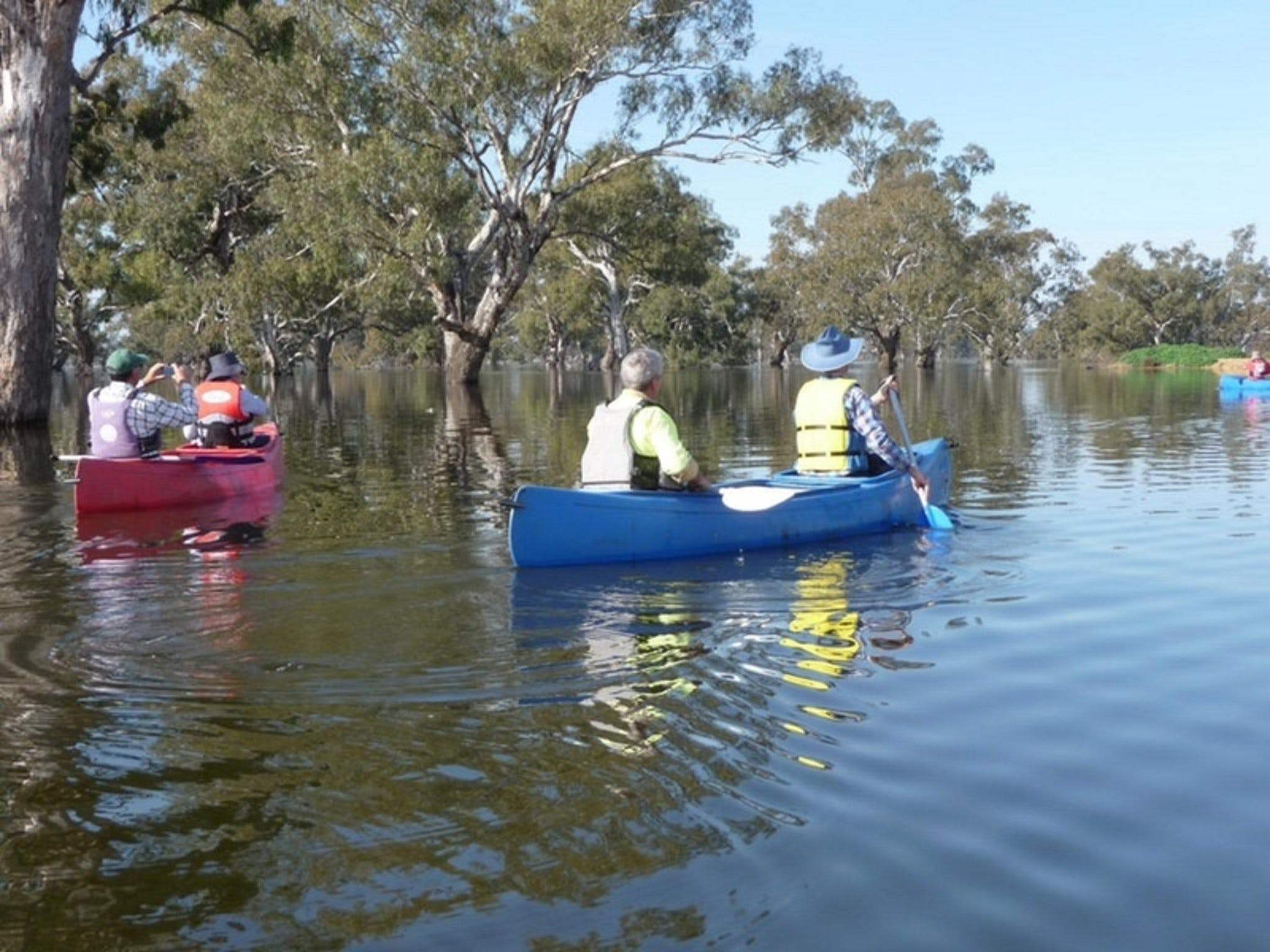 Doodle Cooma Swamp - New South Wales Tourism