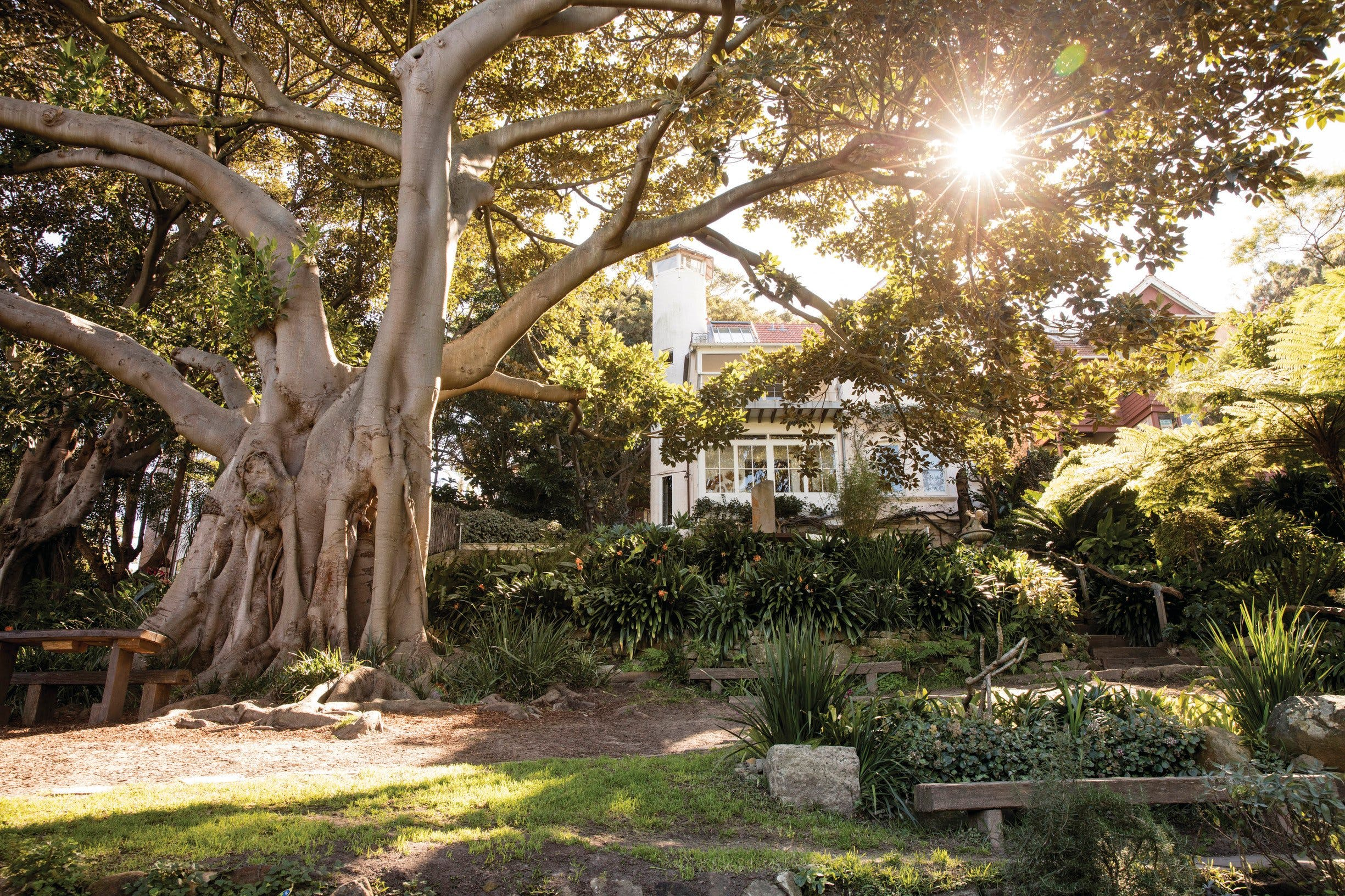 Wendy Whiteley's Secret Garden - New South Wales Tourism