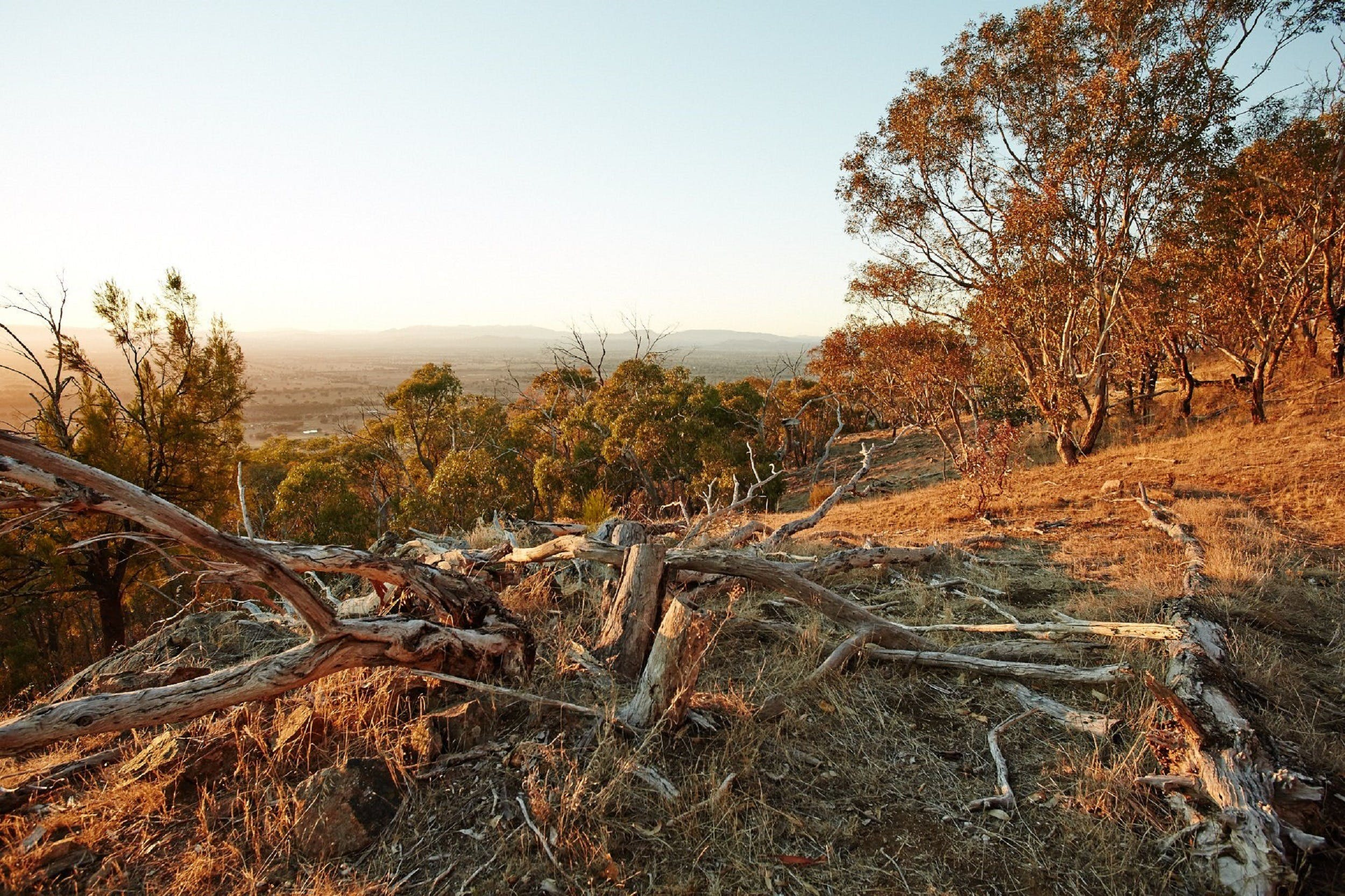 Chick Hill Walk - New South Wales Tourism