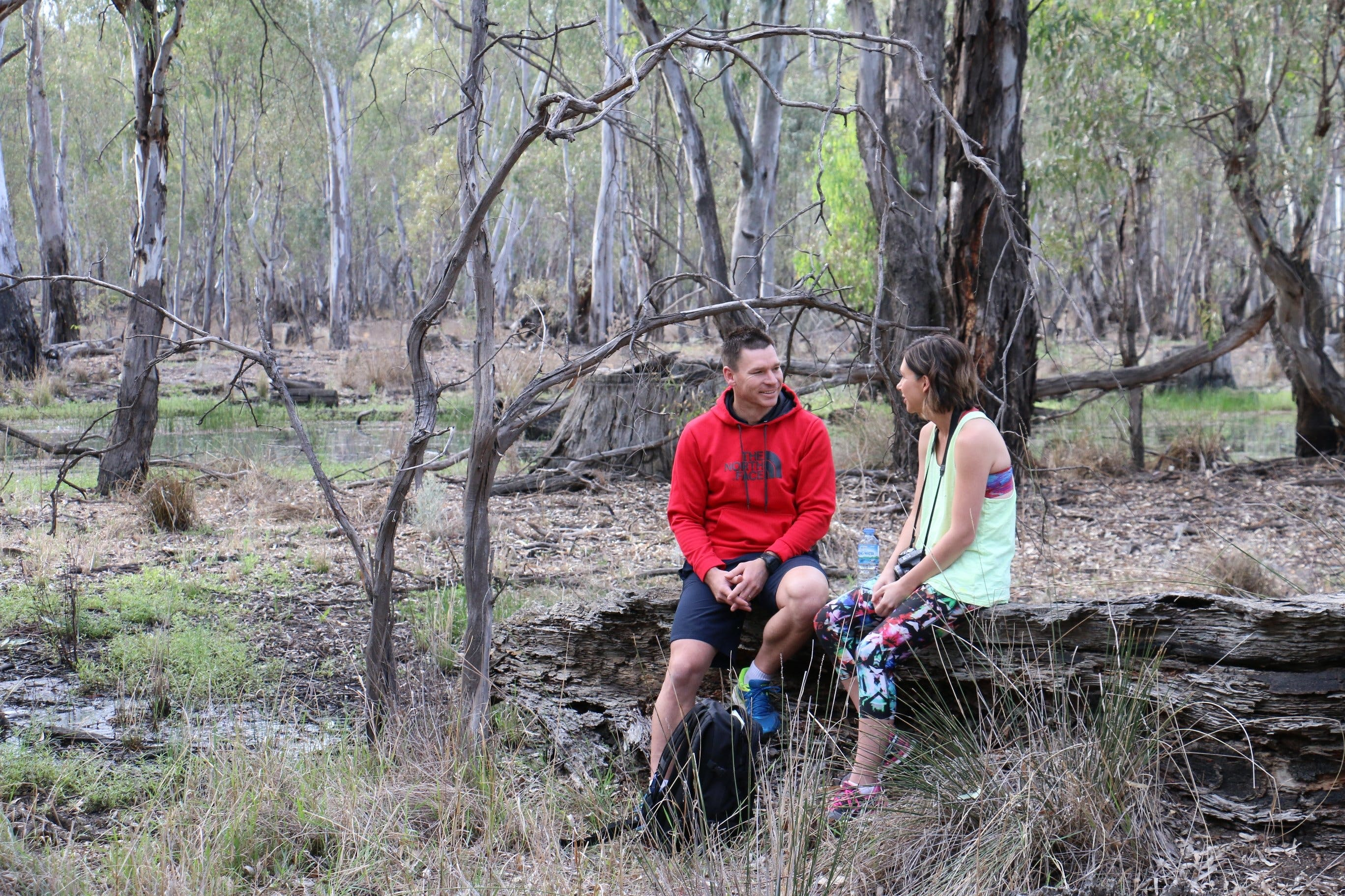 Gunbower Island Forest Drive - New South Wales Tourism