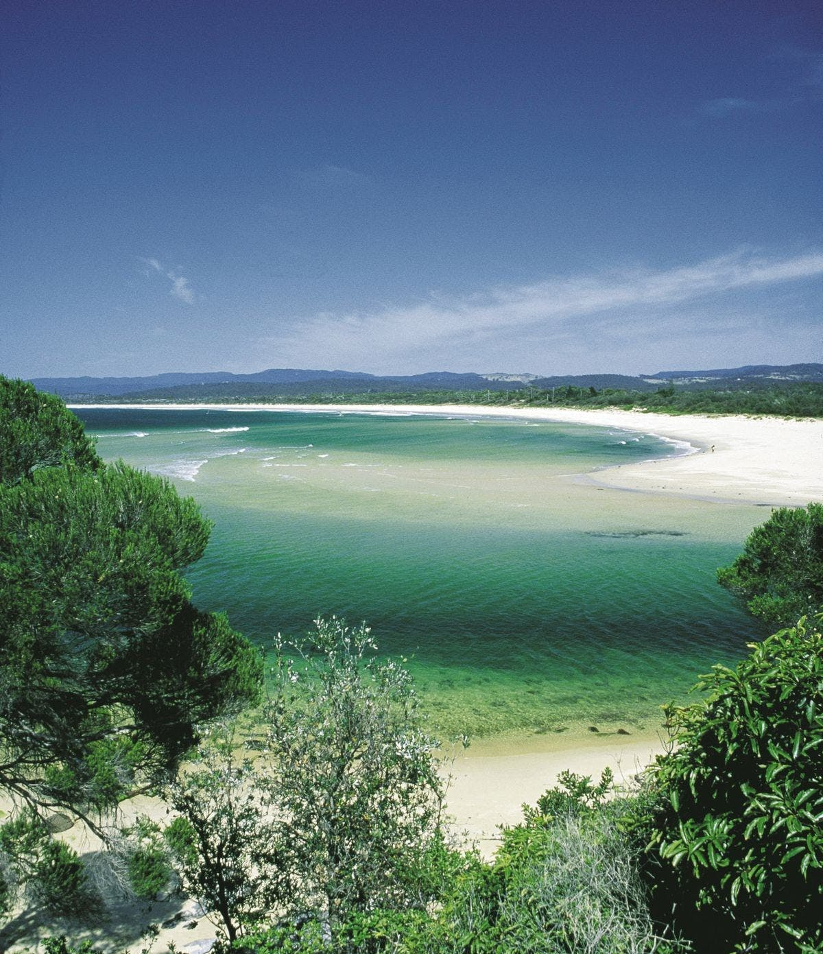 Rotary Walk  Merimbula - New South Wales Tourism