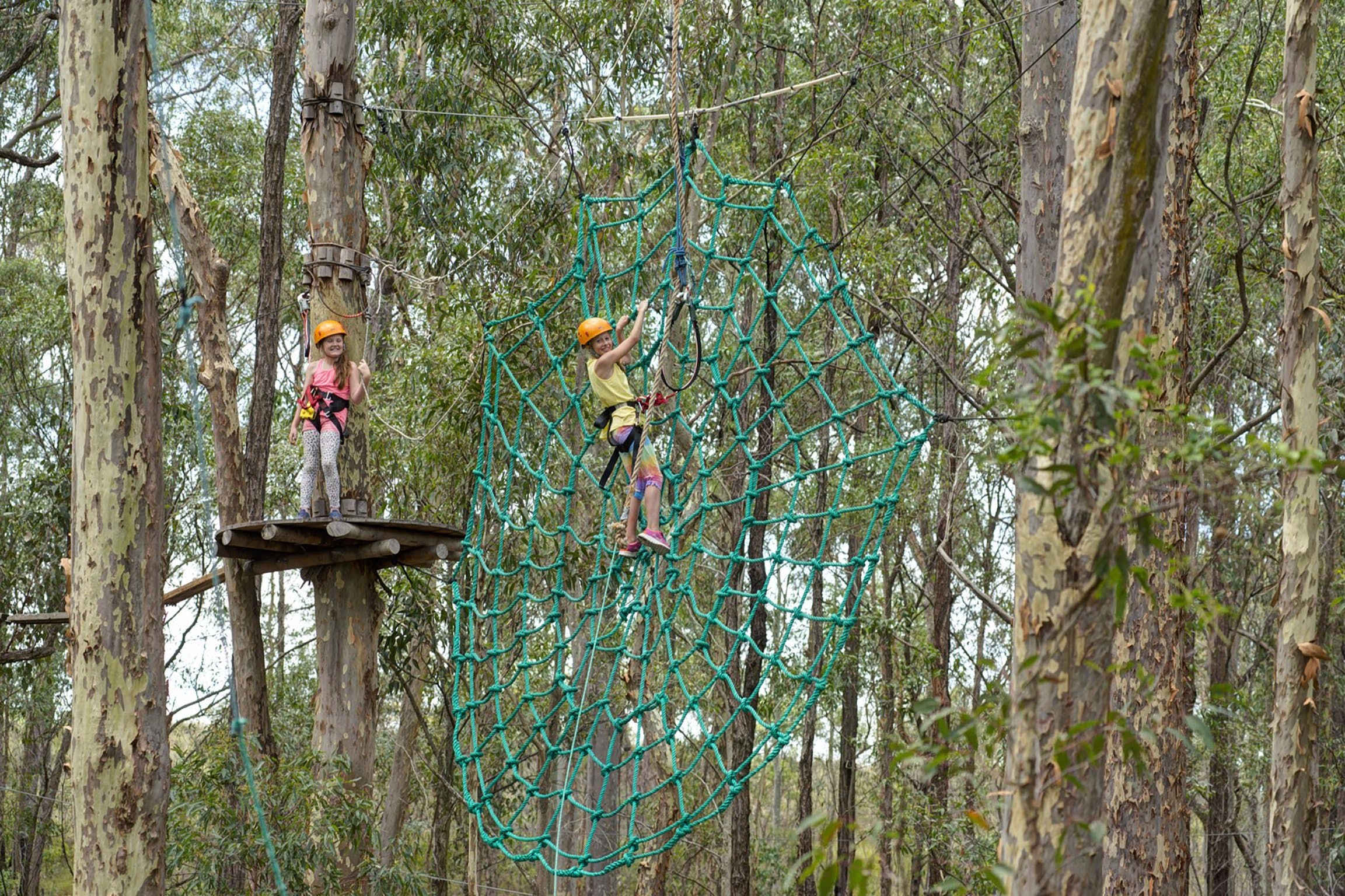 TreeTops Newcastle - New South Wales Tourism