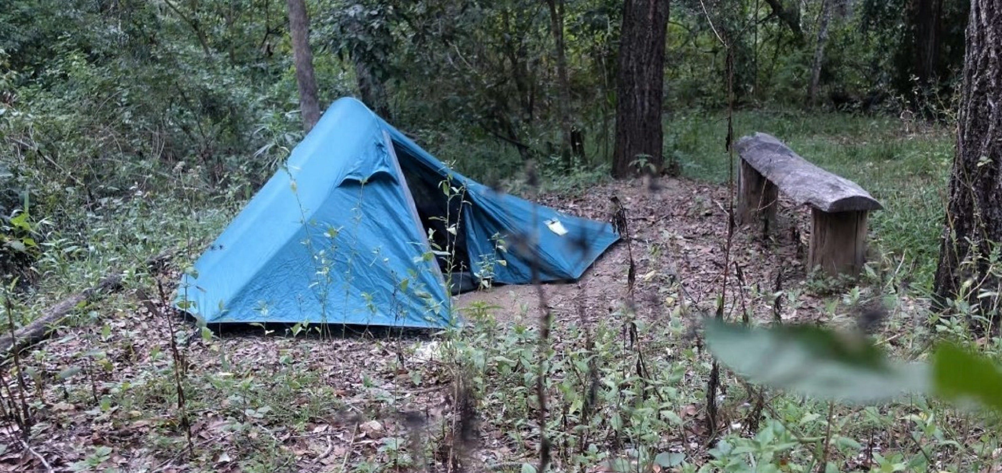 England Creek Bush Camp - New South Wales Tourism
