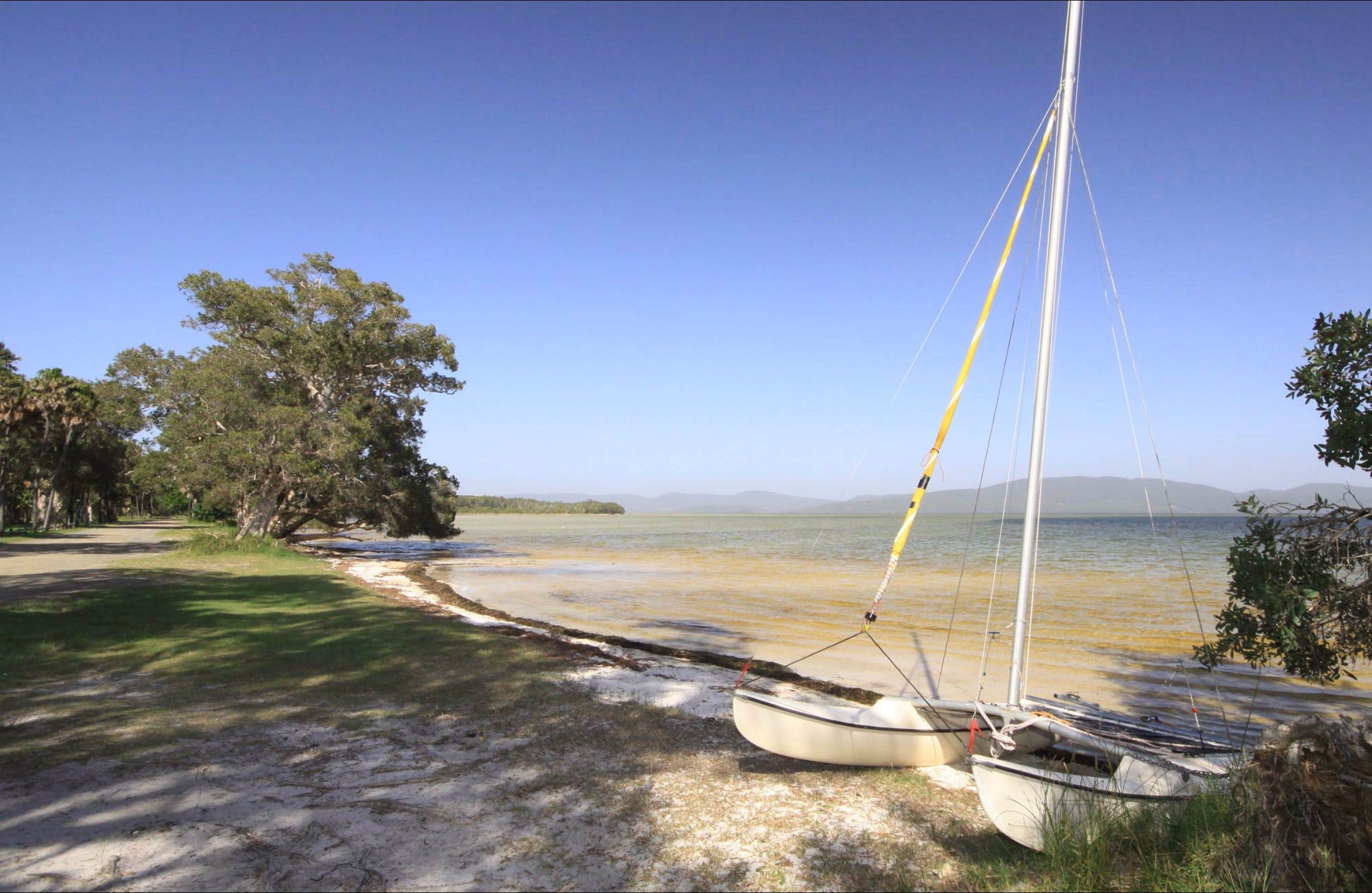 Sailing Club picnic area - New South Wales Tourism