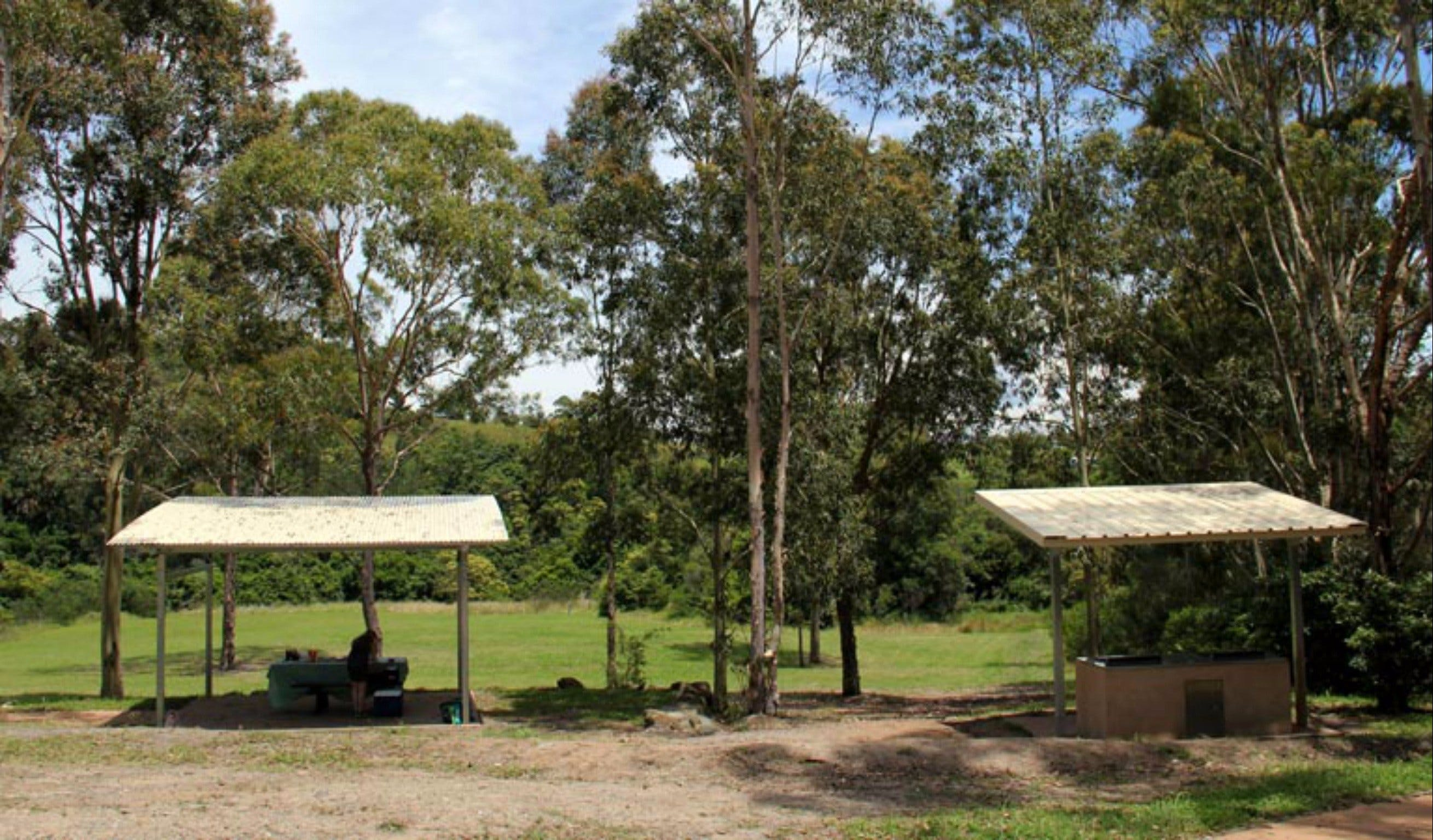 Back Creek picnic area - New South Wales Tourism