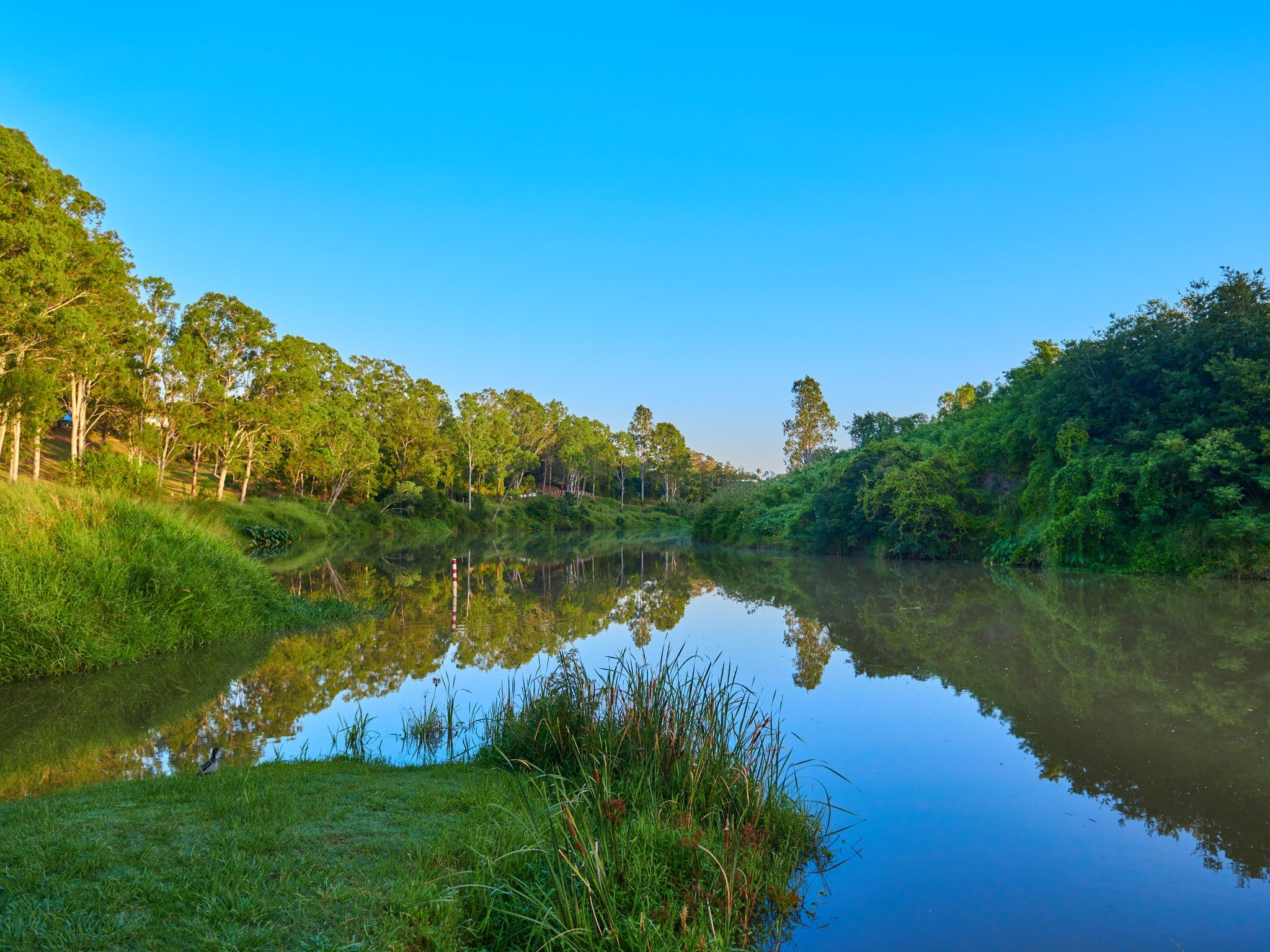 Cribb Park - New South Wales Tourism