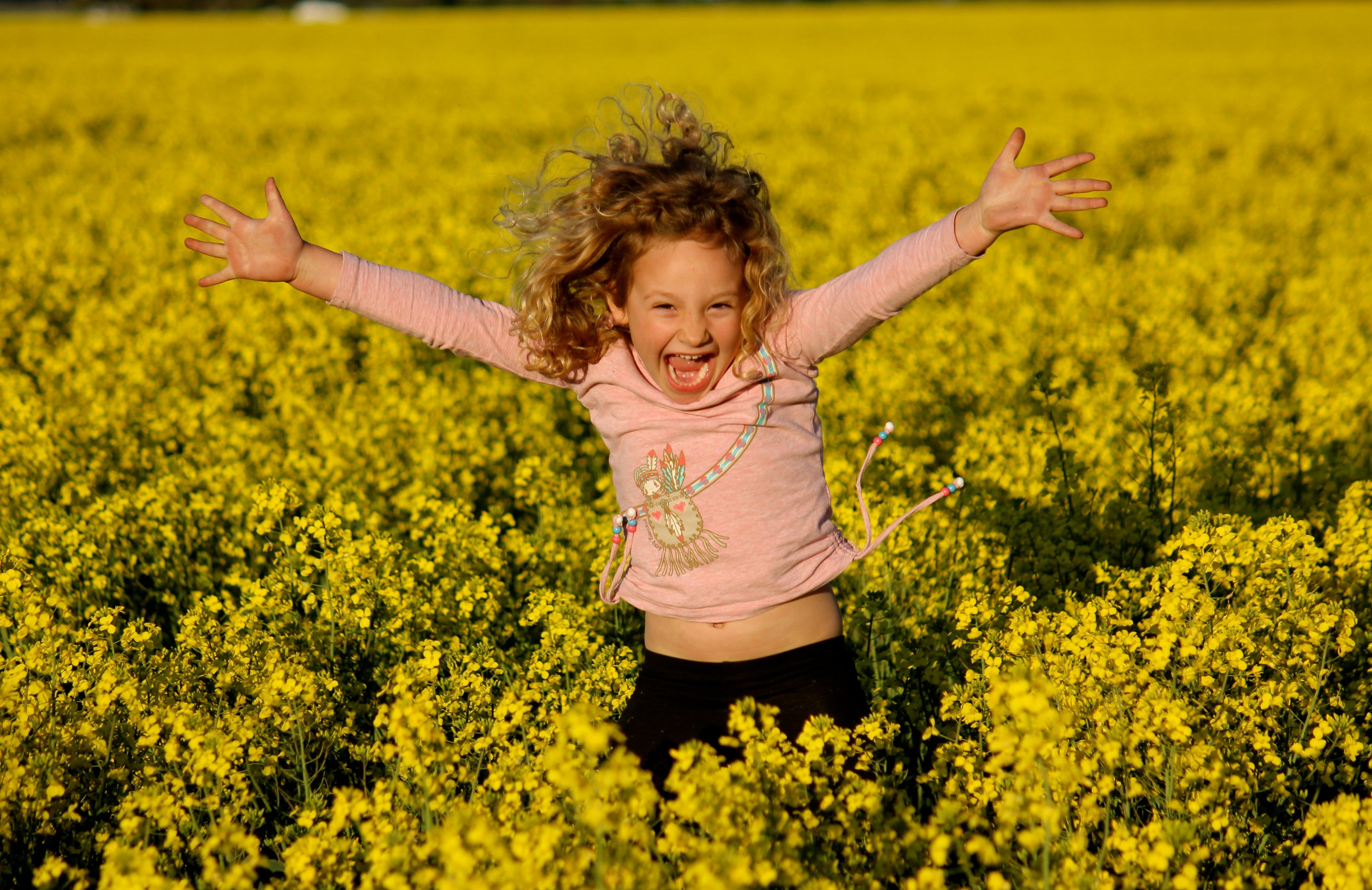 Canola Trail - New South Wales Tourism