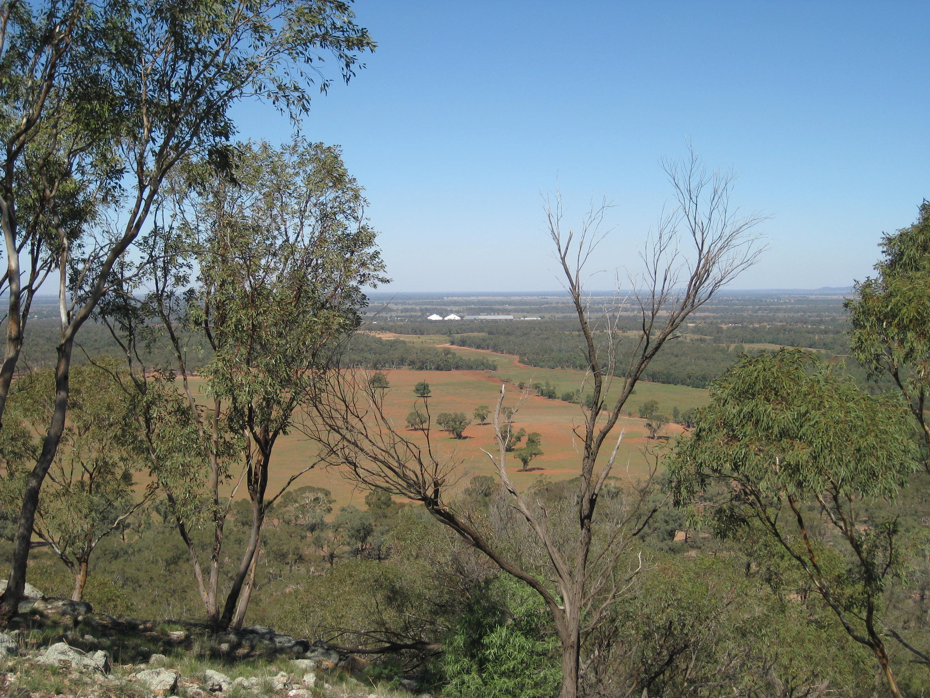 Mount Tilga - New South Wales Tourism