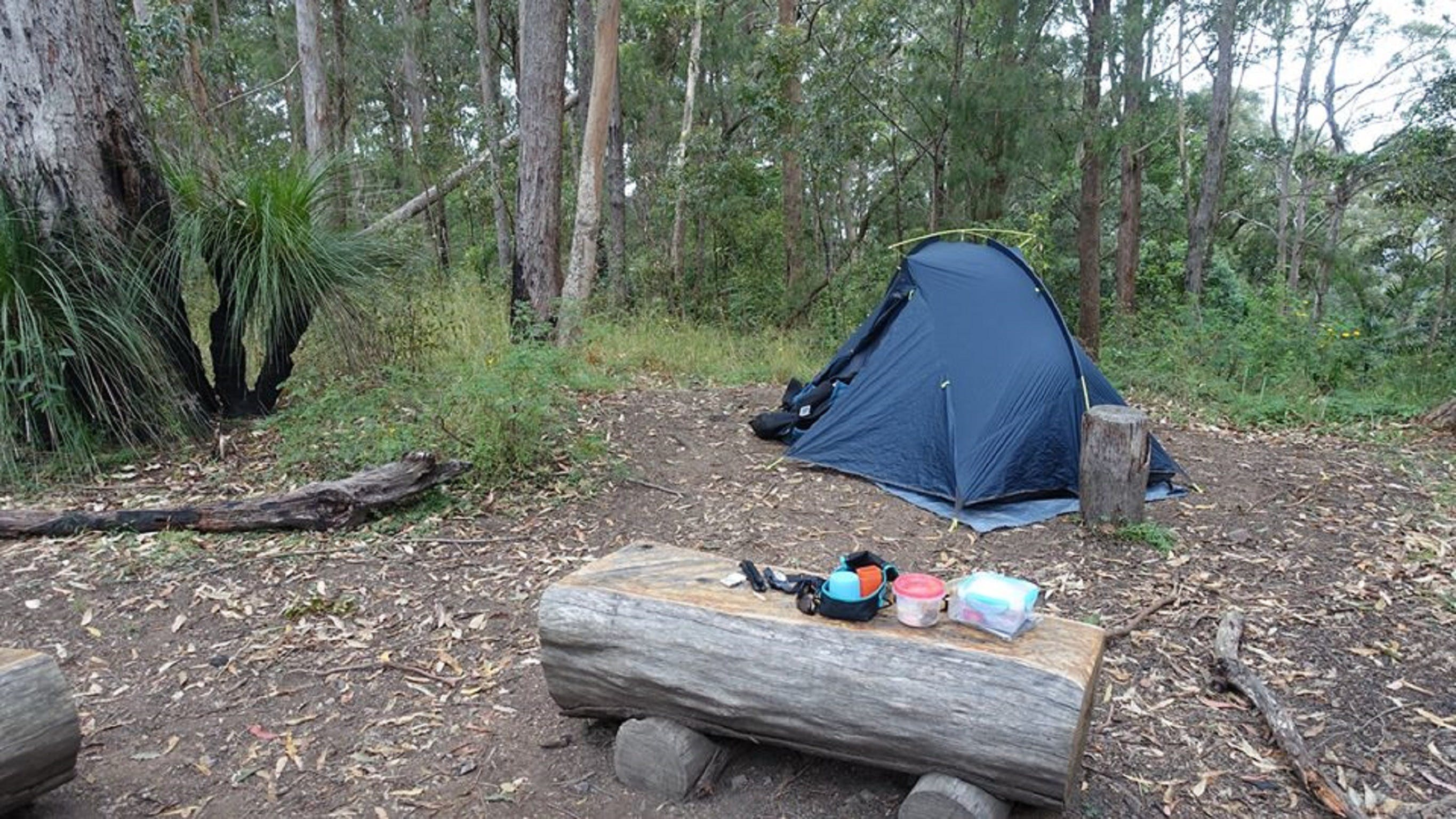 Northbrook Mountain Bush Camp - New South Wales Tourism