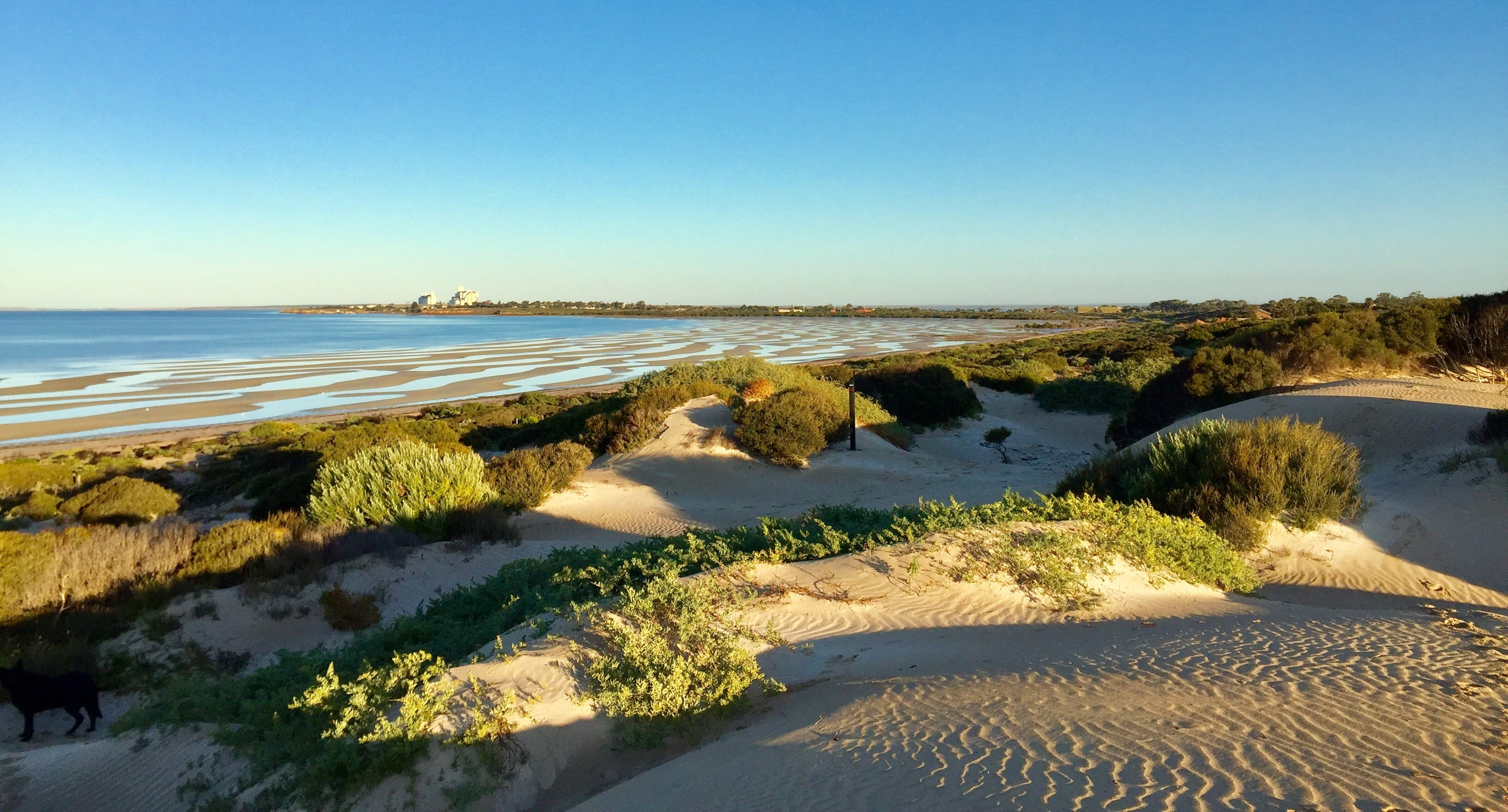 Shelly Beach Dune Walk Trail - New South Wales Tourism