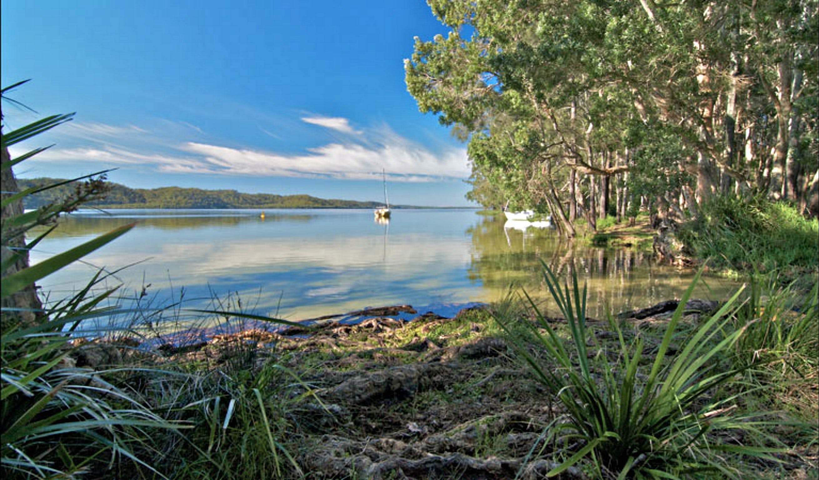 Black Oaks Picnic Area - New South Wales Tourism