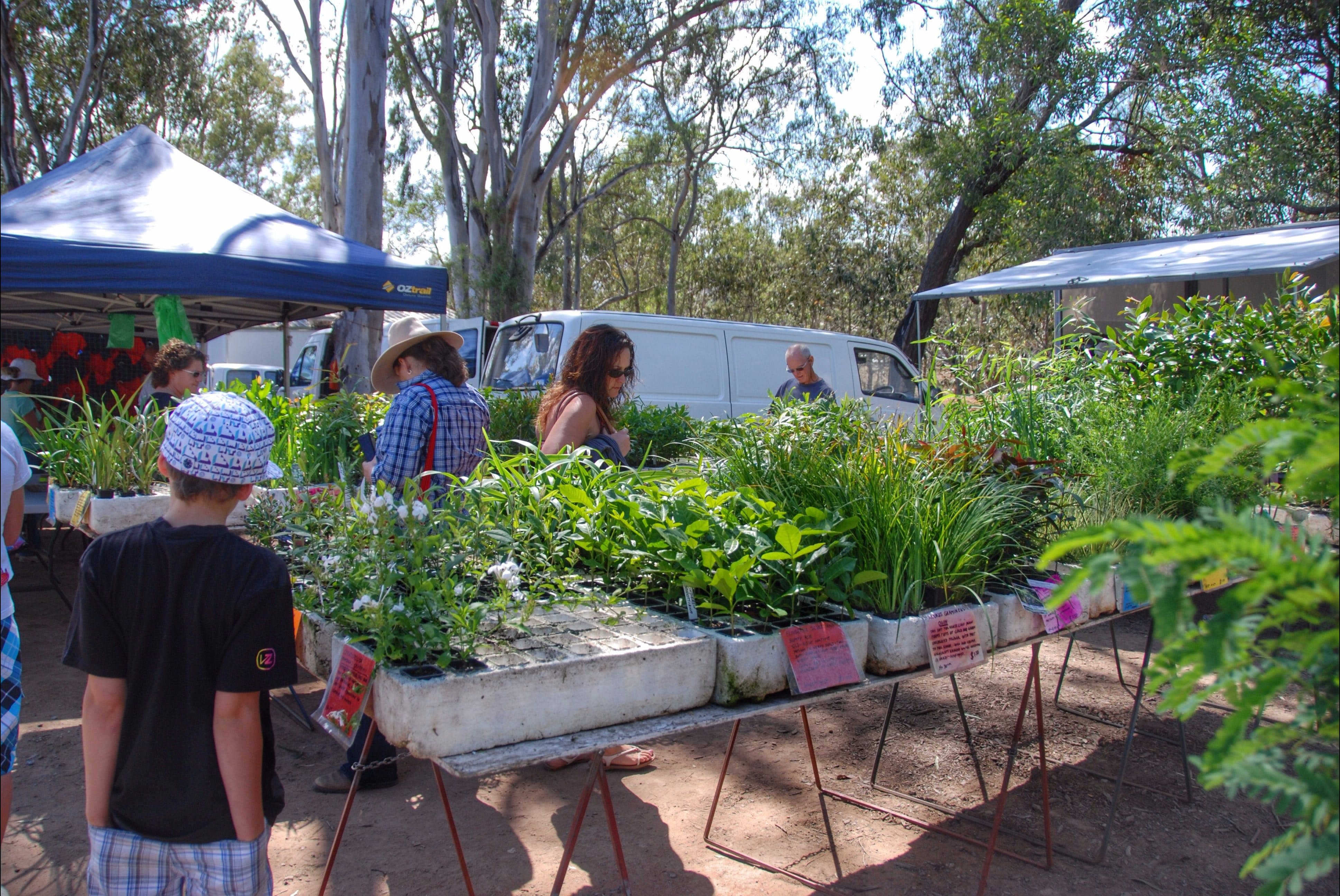 Fernvale Country Markets - New South Wales Tourism