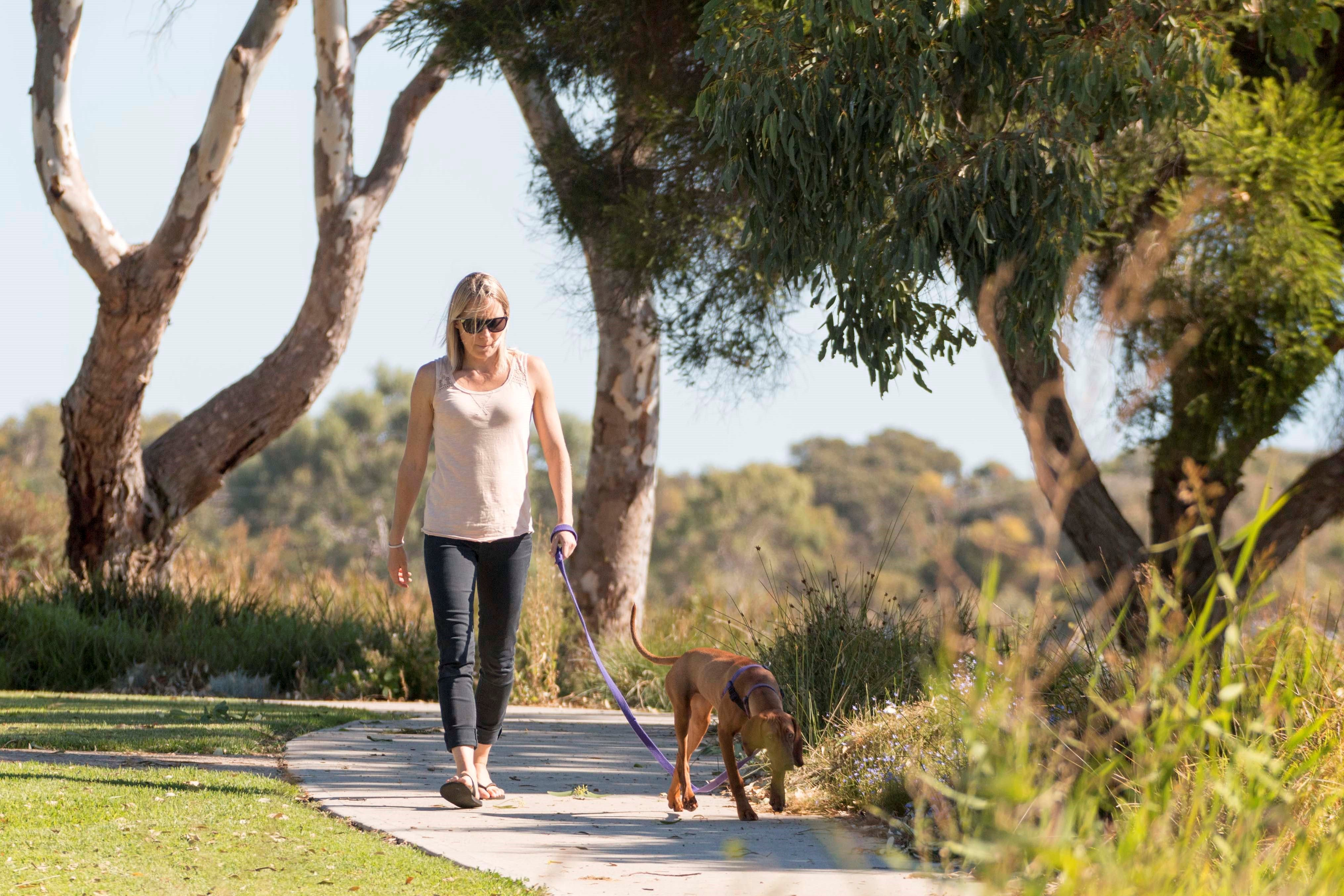 Meningie Walking and Cycling Trails - New South Wales Tourism